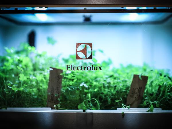 ELETTRODOMESTICI ELECTROLUX