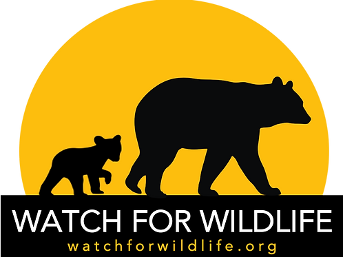 Coming soon...Watch For Wildlife with Bear Family (size: 5x7)