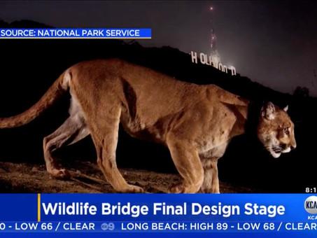 $87M WILDLIFE BRIDGE OVER 101 FREEWAY ENTERS FINAL DESIGN STAGE