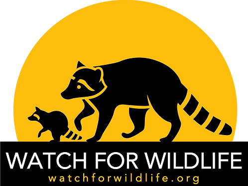 Watch For Wildlife with Raccoon Family (size: 5x7)