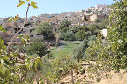 view from wadi