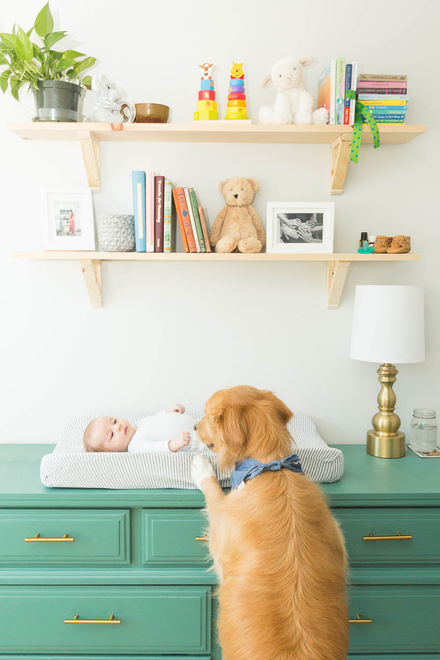 dog puts feet up on baby's changing table