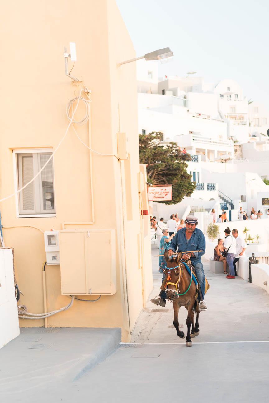 Greek man rides donkey up a street in Santorini