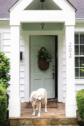 Dog-stands-outside-mint-front-door-for-e