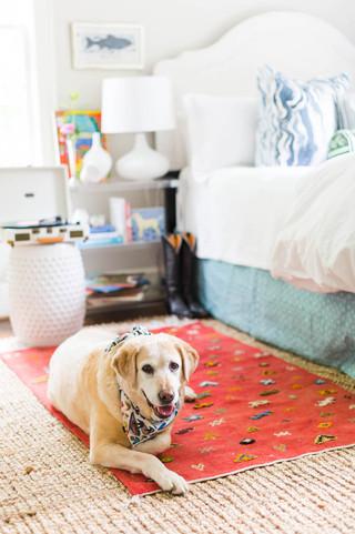 Golden-Retreiver-sits-on-bedroom-floor-f