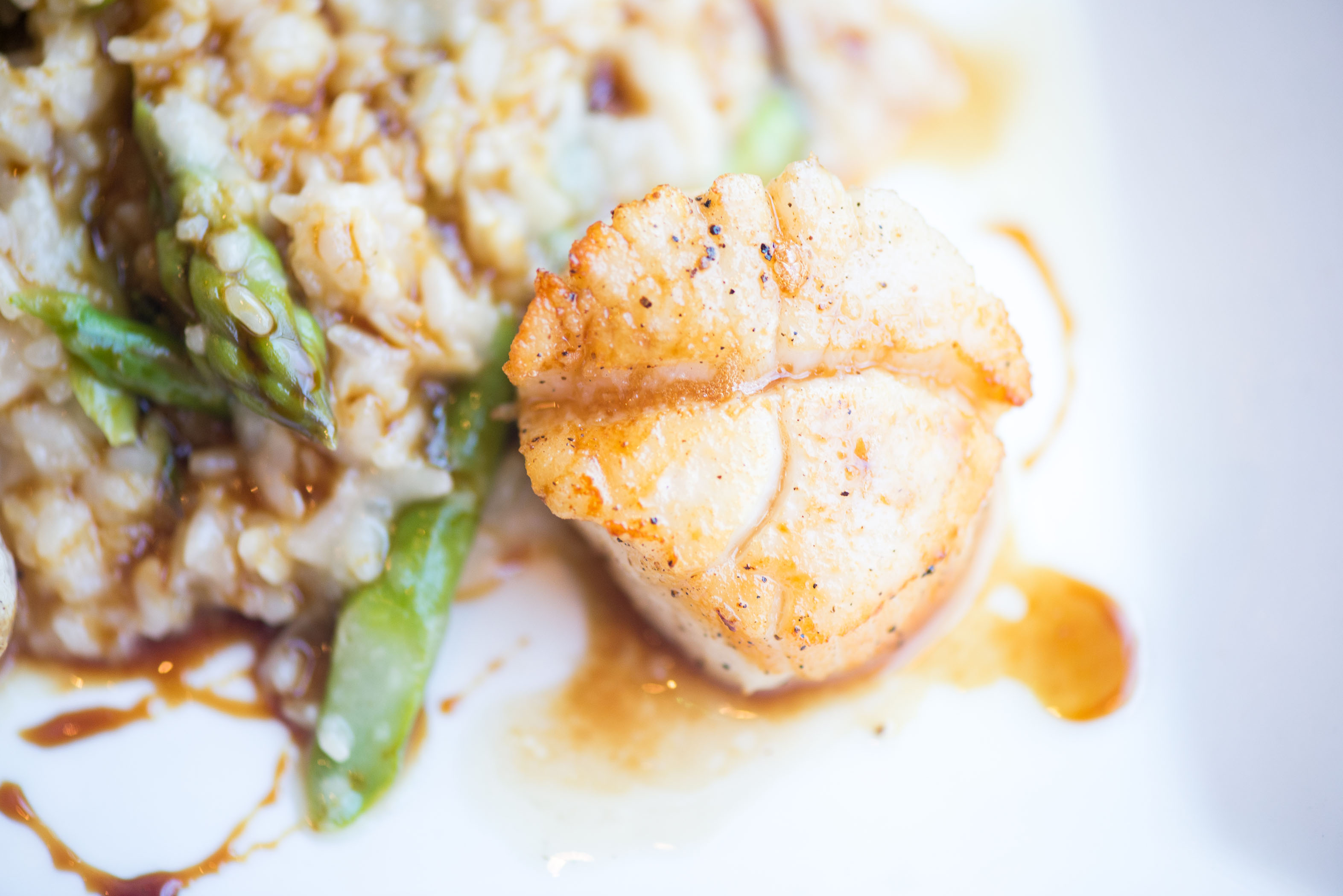 Scallops from Greenville Chef Image