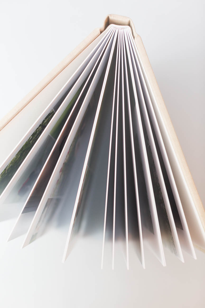 spine and vertical view of album pages