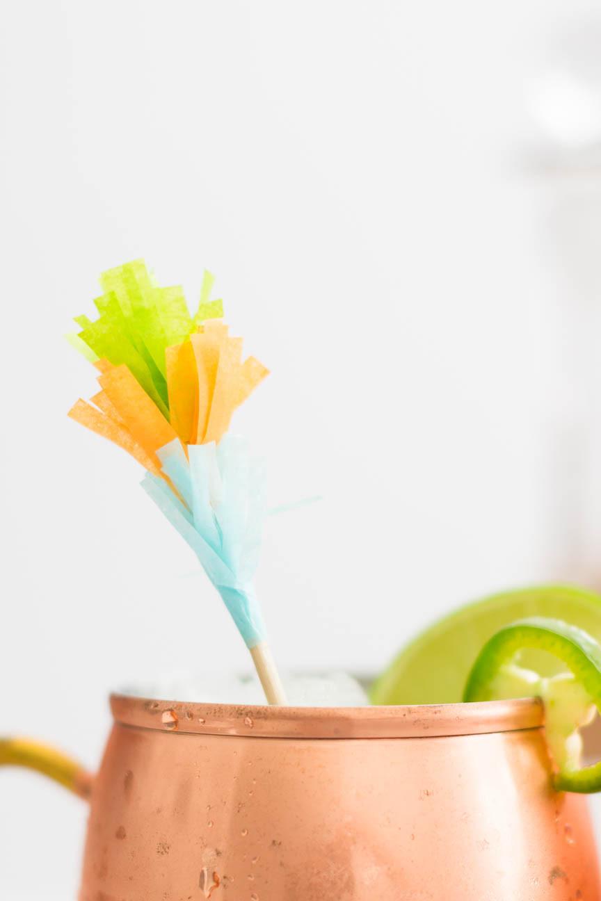 mexican moscow mule stirrer, frozen drink, Cinco de Mayo cocktail, DIY