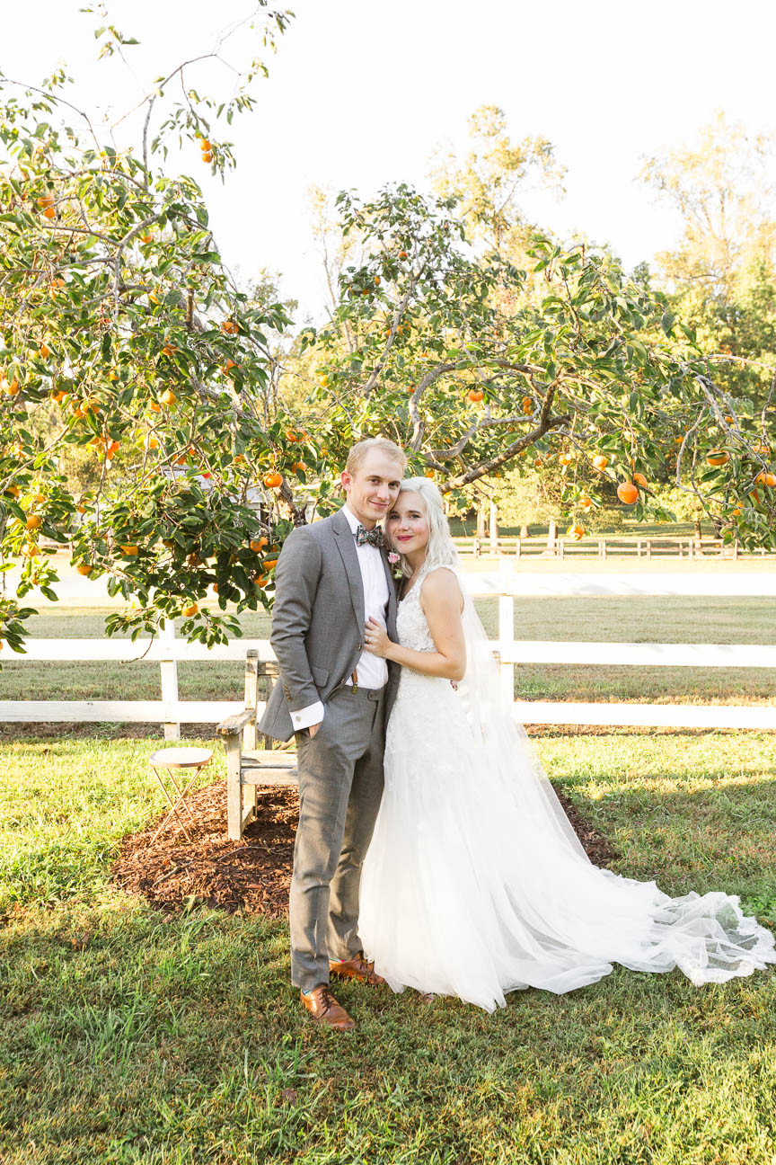 portrait of bride and groom in front of persimmon tree