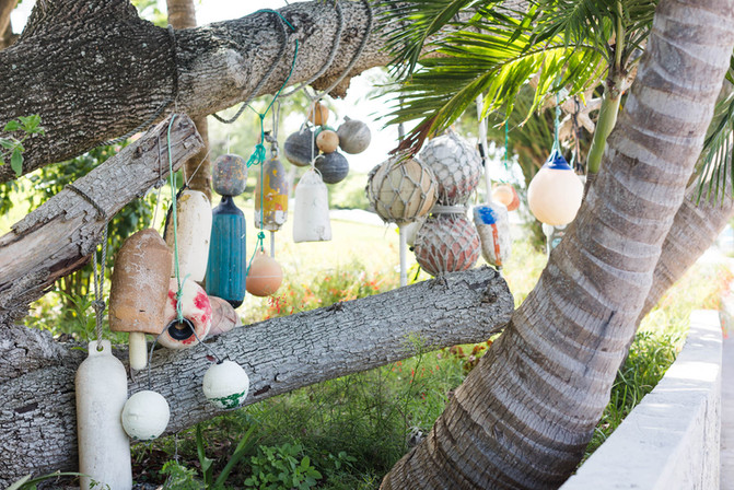 painted-boat-bouys-in-tree-in-Bahamas_©C