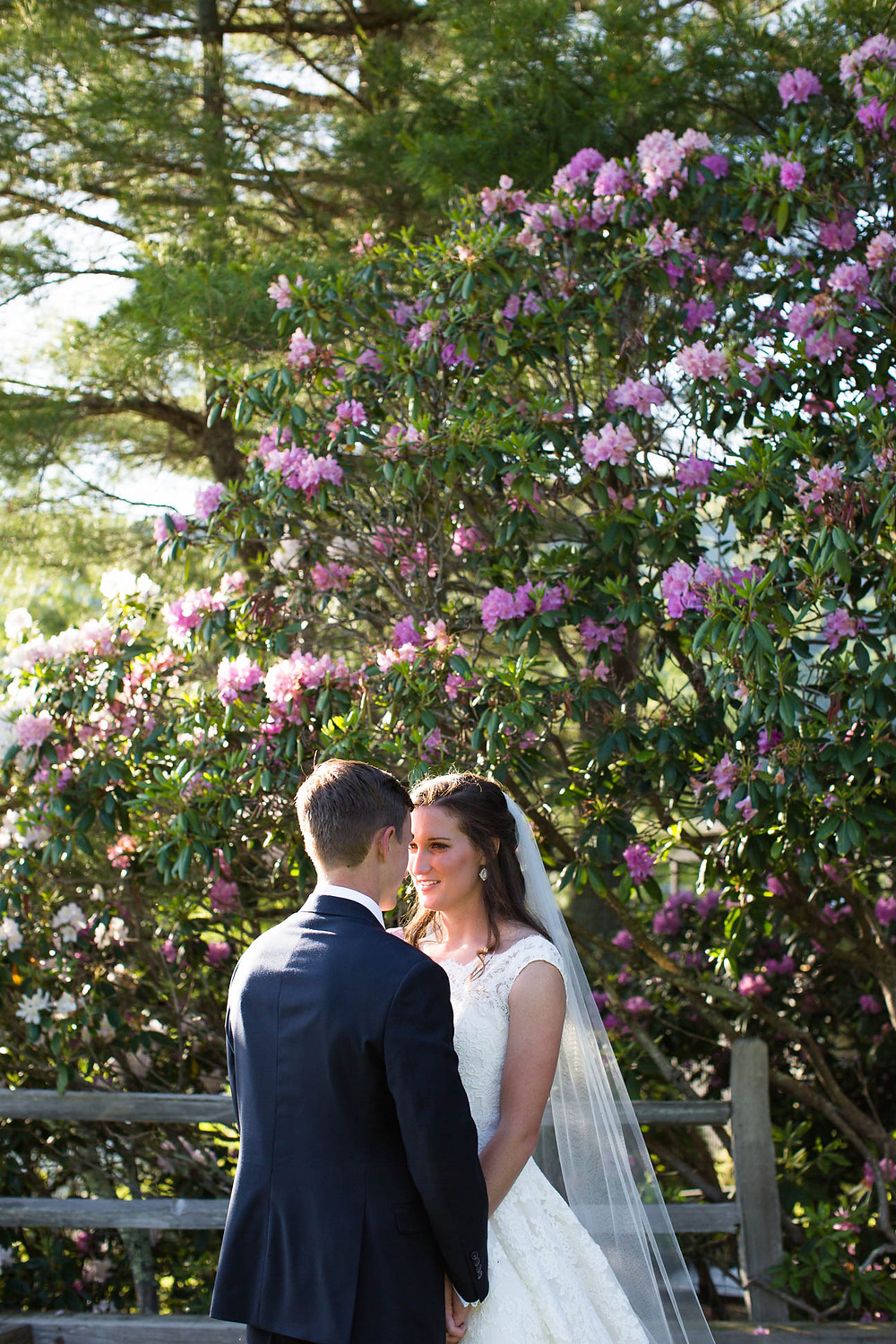 bride and groom portrait in front of floral tree