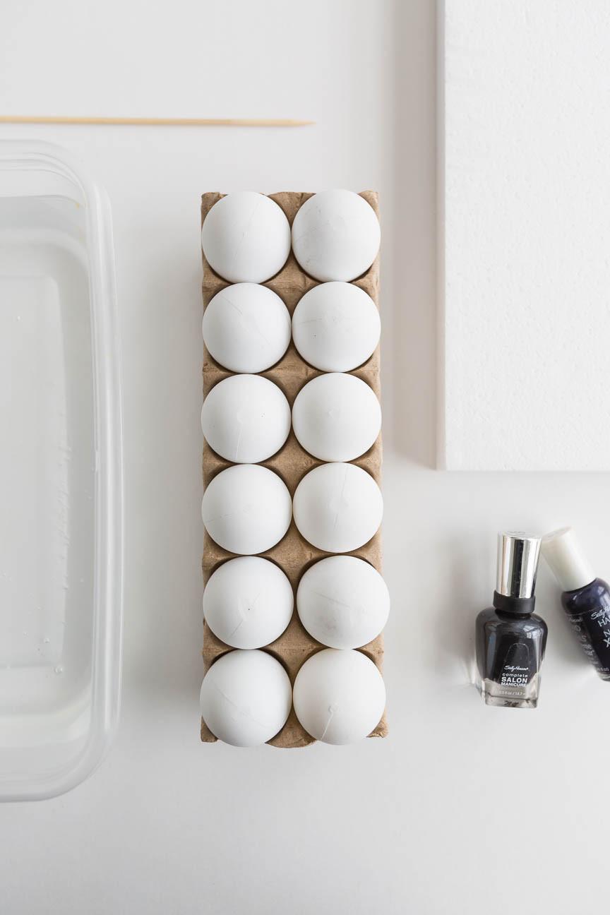 eggs in carton, DIY, Greenville SC photography