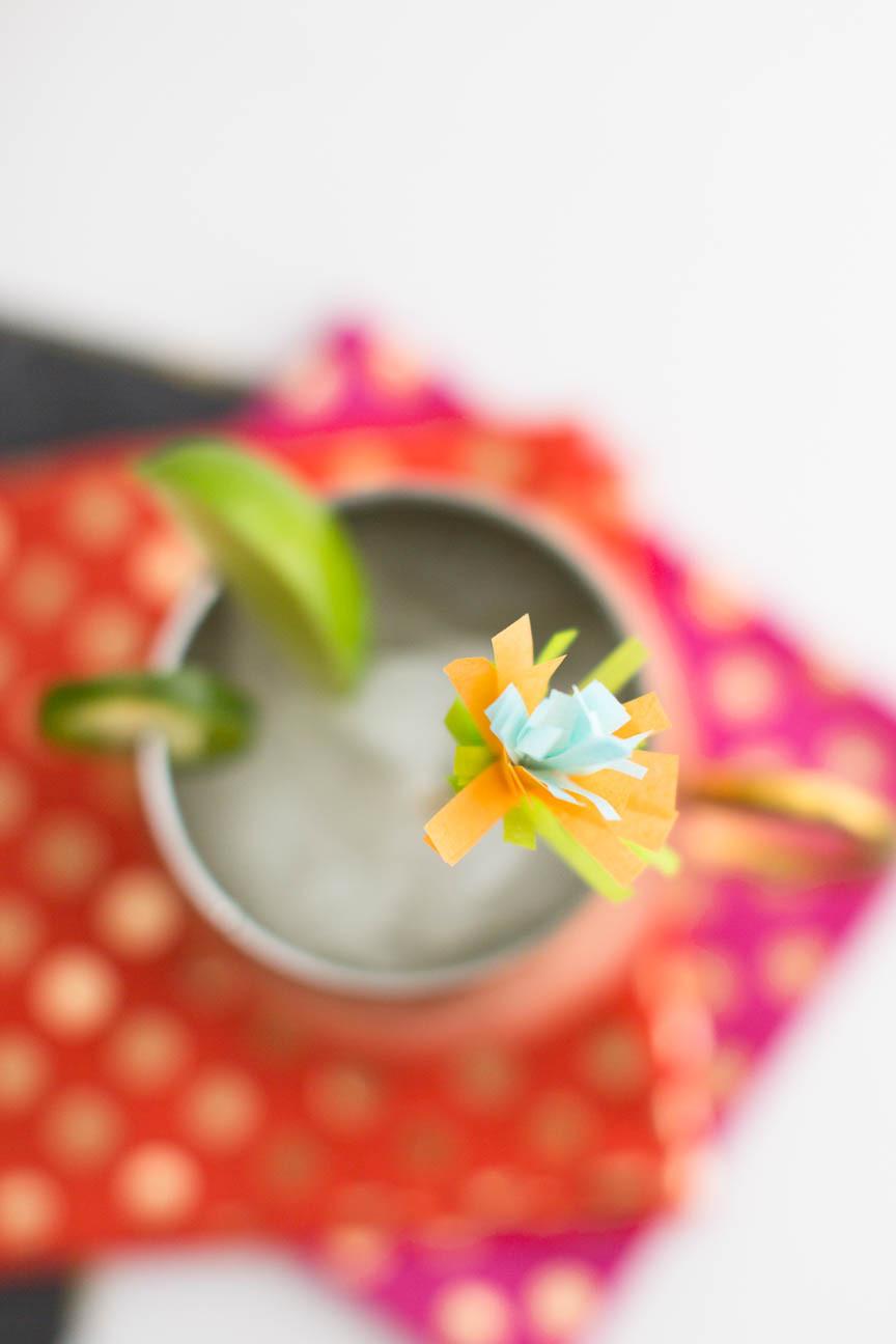 moscow mule stirrer, frozen drink, Cinco de Mayo cocktail, DIY