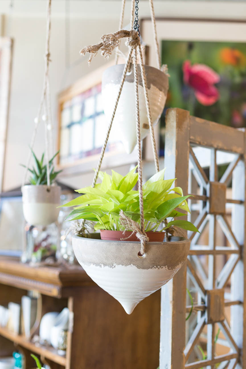 A ceramic pot with green plants hangs at Urban Digs, Greenville SC retail shop