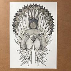 Hawk Mandala