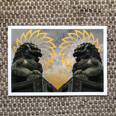 Lion Sun 2