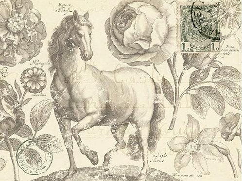 Botanical Equine Decoupage