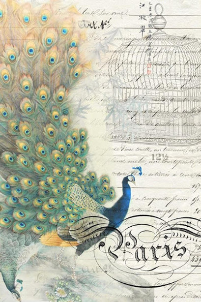 Peacock Decoupage