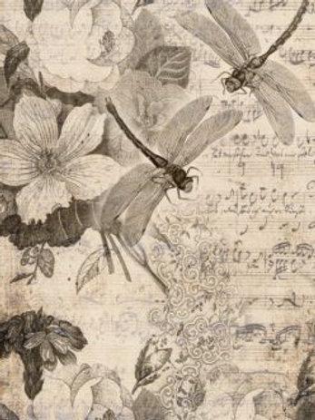 Musical Dragon Flies Decoupage