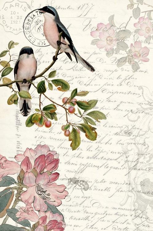 Spring Birds Decoupage