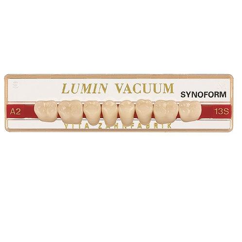שמיניות תחתונות - LUMIN VACUM