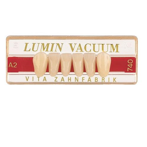 שישיות תחתונות- LUMIN VACUM