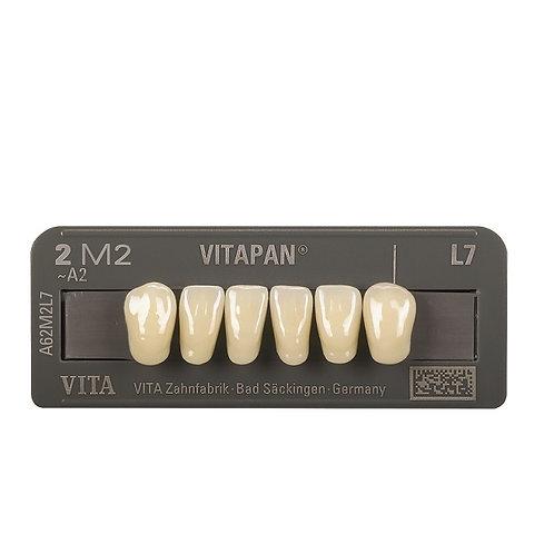 VITAPAN 3D - שישיות תחתונות