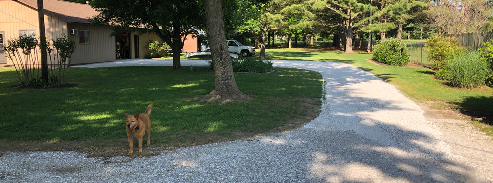 Driveway Gravel