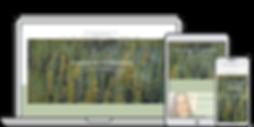 kalmar_termeszetgyogyasz_webdesign.png