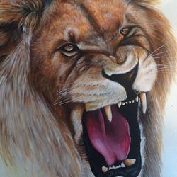 Roaring Lion - Zoom