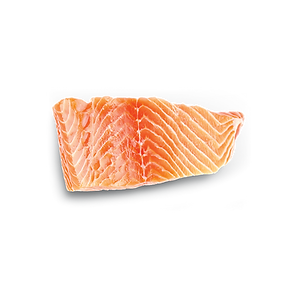 food_salmon.png
