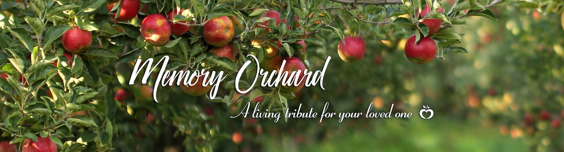 memory orchard banner landscape b.jpg