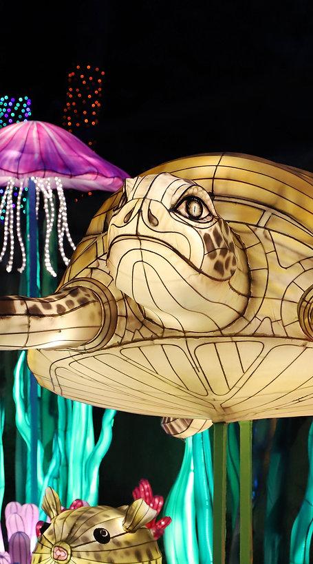 Festival of Illumination website 35x  6.jpg