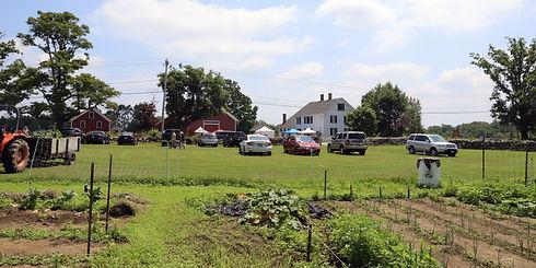 DF Garden 07052020 3.jpg