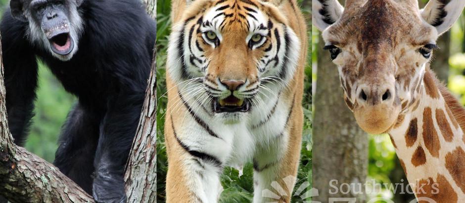 Southwick's Zoo, Mendon, Massachusetts