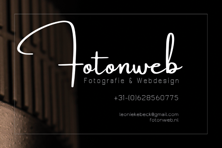 fotonweb business cards