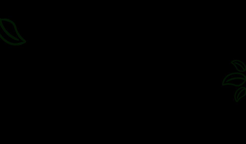 second bg.jpg