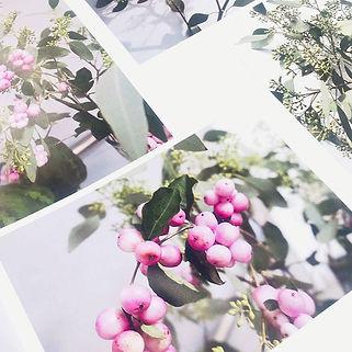 Photoshoot-7.jpg