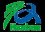 Hanban Institute logo