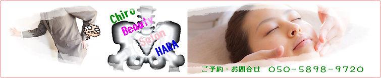 HPtop3.jpg