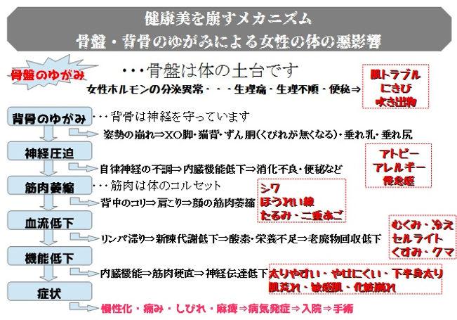 健康美を崩すメカニズム.jpg
