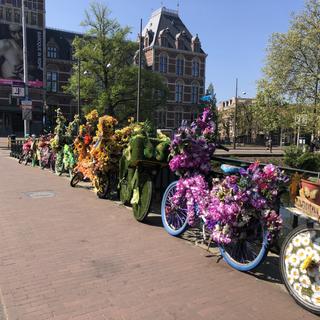 Amsterdam Flowerbikes