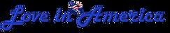 Banner - Wix website.png