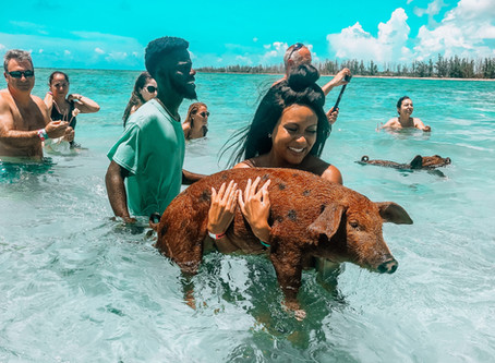 Swimming with Pigs - Bahamas