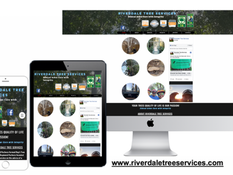 Riverdale Tree Services Brighton Colorado Tree Services Case Study