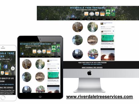 Riverdale Tree Services Brighton Colorado Tree Services Case Study