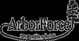 AF-Logo-11-2-18%20copy_edited.png