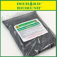 DH-BIORUSH.png