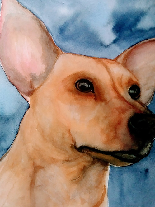 Water Color Pet Portraits by Kelly & Family Studio