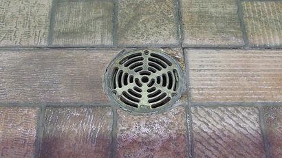 drain-1016464_1920.jpg